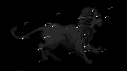 leo-constellation